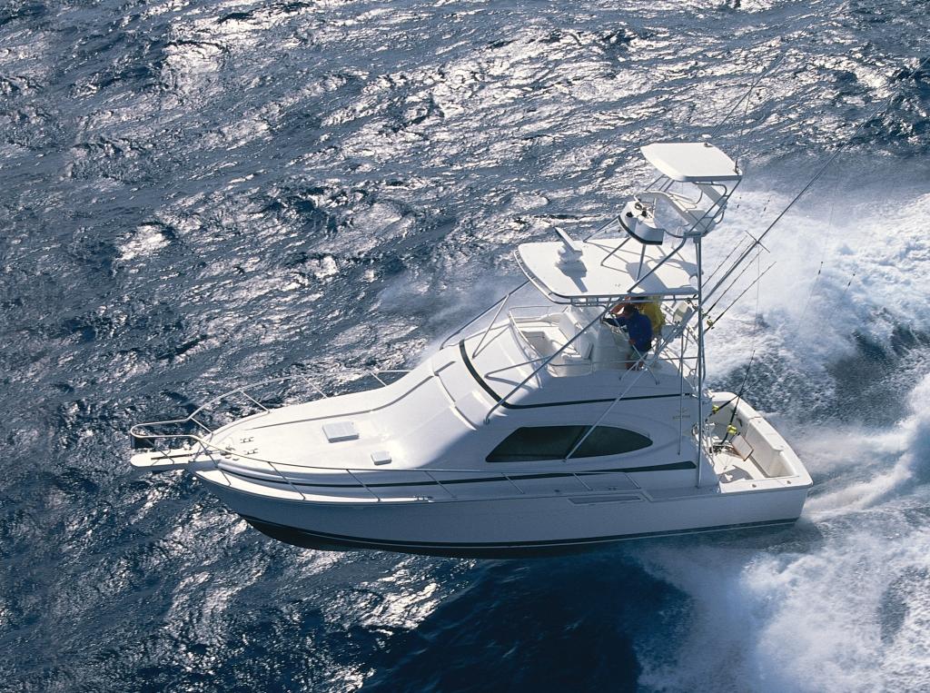 Bertram 390 (Fisher)