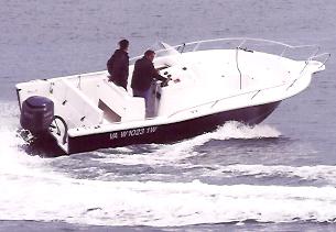 Kelt White Shark 245 (Day Open)