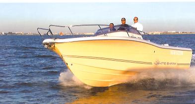 Kelt White Shark 268 (Day cruiser)